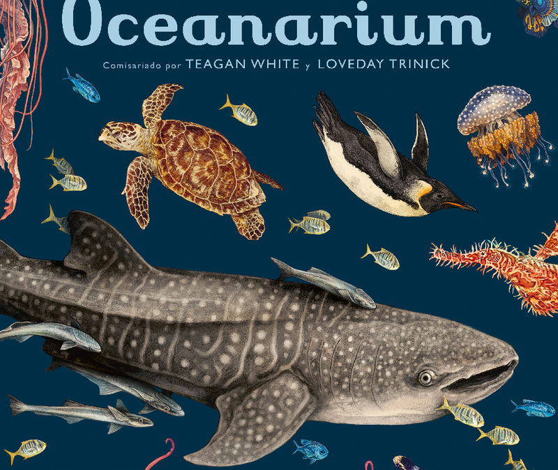 Surcando mares en un barco vikingo – Con Letra Grande – RTVE – «Oceanarium», de Teagan White