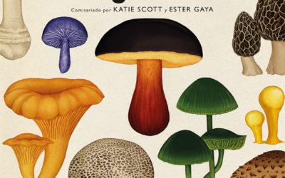Zenda recomienda – Zenda – «Fungarium», de Katie Scott y Ester Gaya