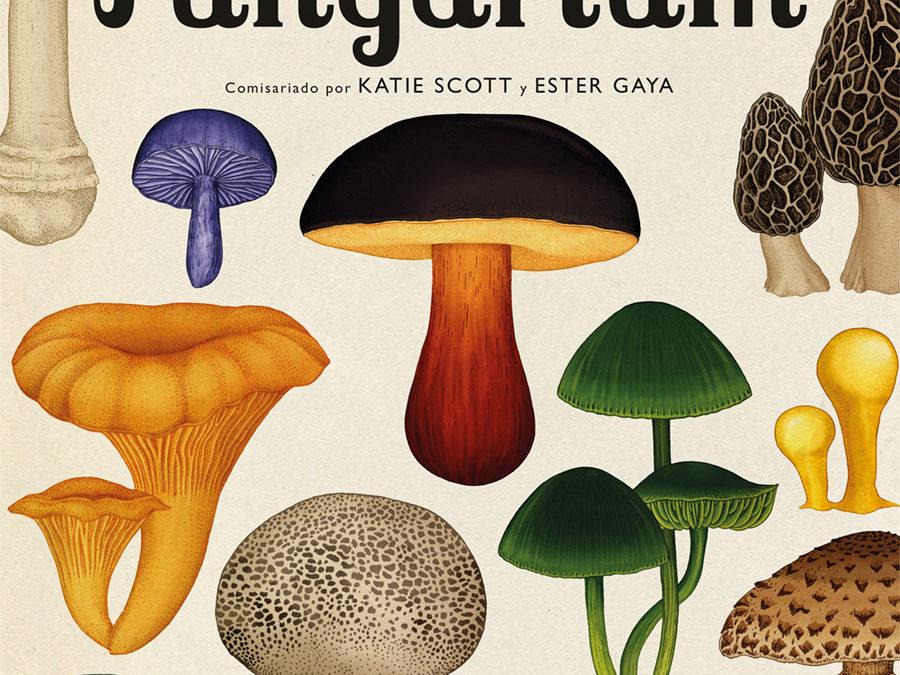 «Fungarium», el libro ilustrado que nos descubre los secretos de los hongos – RTVE- «Fungarium», de Katie Scott
